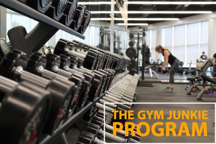 The Gym Junkie Program